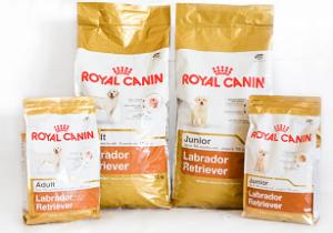 Royal Canin Labrador Retriever Image