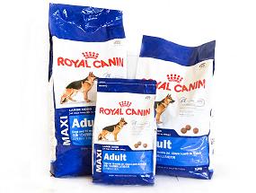 Royal Canin Maxi Image